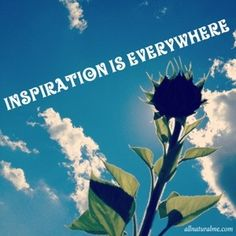 Inspiration is everywhere! I am open to finding authentic beauty and allowing it to bring bliss into my life.