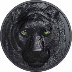 Schwarzer Panther - 2 Unzen Feinsilber Scary Eyes, Staring At You, Night Pictures, Coin Collecting, Grace Kelly, Silver Coins, Black Panther, Monet, Black Silver