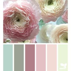 ranunculus hues color palette from Design Seeds Design Seeds, Colour Pallette, Colour Schemes, Color Combinations, Palette Design, Color Balance, Colour Board, Color Swatches, Color Theory