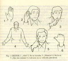 Lenguaje gestual