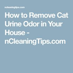 How to Remove Cat Urine Odor in Your House - nCleaningTips.com Cat Urine Remover, Urine Odor, Odor Remover, Stop Cats From Peeing, Carpet Cleaning Machines, Cat Pee, Odor Eliminator, Cat Behavior, Pressure Points