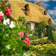 Happy house!:)
