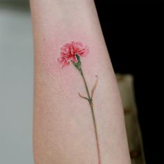Flower tattoos are extremely popular in various kinds, sizes and colours. They have wide range of variety. Japanese flower tattoos are very popular de. Carnation Flower Tattoo, Pretty Flower Tattoos, Birth Flower Tattoos, Flower Wrist Tattoos, Small Flower Tattoos, Small Wrist Tattoos, Flower Tattoo Designs, Beautiful Tattoos, Tattoo Small