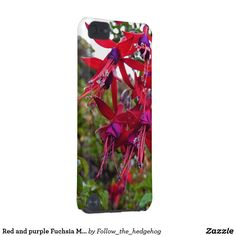 Red and purple Fuchsia Magellanica iPod Touch 5G Case Red and purple Fuchsia Magellanica. Hummingbird Fuchsia or Hardy Fuchsia is a species of flowering plant in the Evening Primrose family, native to Patagonia. The picture was taken in Ushuaia, Argentina
