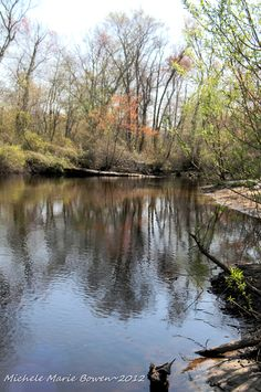Maurice River, Vineland~Cumberland County, New Jersey