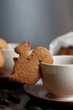 Biscuits with Tonka Beans, in Italian, cutest squirrel shapes, perfect for that cup of tea/coffee