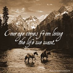 Free to live. Rodeo Quotes, Cowboy Quotes, Equestrian Quotes, Horse Riding Quotes, Horse Quotes, Animal Quotes, Quotes To Live By, Me Quotes, Motivational Quotes