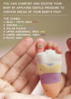 Soulager Bébé des petits maux grâce à la réflexologie plantaire  Zone 1: La tête et les dents Zone 2: Le nez (rhume, encombrement) Zone 3: Le plexus Zone 4: Le haut des abdominaux Zone 5: Le bas des abdominaux Zone 6: zone pelvienne