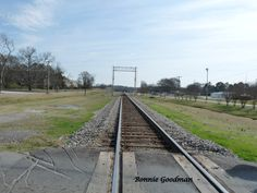 Railroad Tracks at Flint, Alabama