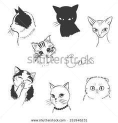Cute cats. Vector illustration in black and white by Peratek, via ShutterStock
