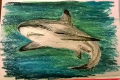 Black-Tipped Shark by Darla Vaughan Original Oil Pastel Fine Art Painting Ocean Creature Drawing Underwater seascape 10x7 Unmatted Unframed by LoveStreetUSA on Etsy