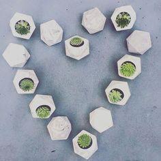 Discover house designs ideas on pinterest house design adelaide tatiterrariumselaide junglespirit Gallery