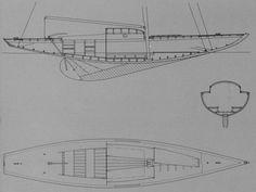 Requin, plan d'aménagements