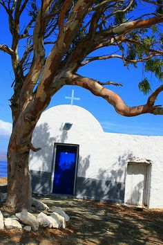 Curved tree and traditional church in Astypalea island, Greece Go Greek, Greece Holiday, Beautiful Islands, Beautiful Sky, Greece Islands, Santorini Greece, Beautiful Places To Visit, Greece Travel, Greece