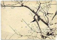 Masao Yamamoto - Photography & Poetry - Photo & Poésie