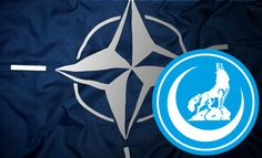 NATO's terror network through Turkey has now been chronicled and offers all of the pieces to help explain the current geopolitical climate.