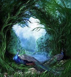 Carol Cavalaris - Peacock Meadow