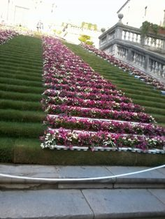 en mayo  girona escaleras de la catedral
