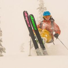 Tips up! Wilderness, Skiing, Adventure, Photo And Video, Cats, Instagram, Gatos, Kitty Cats, Ski