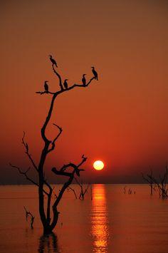 Lake Kariba, Zimbabwe, Africa  via National Geographic