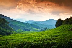 """https://flic.kr/p/9Xh51g 