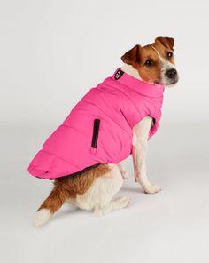 Racer Dog Vest - For the Pet  Home - RalphLauren.com