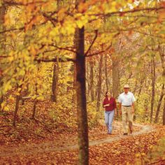 southern living 10 North Georgia Surprises, the south
