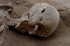 Prehistoric Massacre Site Hints at War Among Hunter-GatherersThe remains of 27 individuals have been recovered along the shore of Lake Turkana in Kenya. The remains are roughly years old, and may be one of the first discovered instances of. Kenya, Anthropologie, Natural Born Killers, Early Humans, Hunter Gatherer, Stone Age, Warfare, Archaeology, Pregnancy