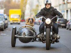 39Motorcycle Sidecar