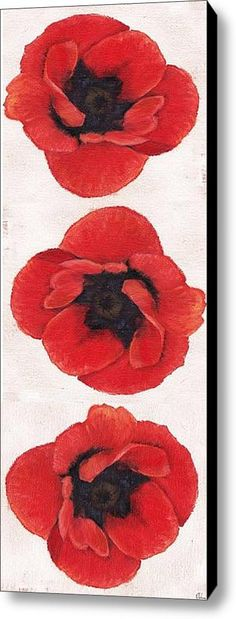 Three Red Poppies Stretched Canvas Print / Canvas Art By Cecely Bloom