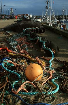 Trawl nets and the associated tangle of ropes and floats laid out to dry by the harbour on Sandside, Scarborugh.     http://bamboonets.com/netting-techniques-2/trawl-nets/