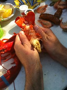 How to Crack and Shell a Whole Lobster