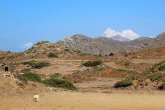 Carnet de voyage en Grèce : les Cyclades en Catamaran Paros, Catamaran, Mountains, Nature, Travel, Travel To Greece, Santorini, Naturaleza, Viajes