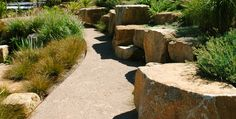 Gravel pathways www.jamesrosslandscape.com.au