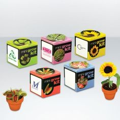 Tiny terracotta pot, complete with soil and a choice of seeds, choose from Venus Flytrap, Sunflower, Wildflower or Norway spruce.  Pot comes complete with a cardboard outer cube which can be personalised.    Great business gift that is eco concious.