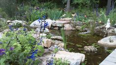 Pond and Patio.