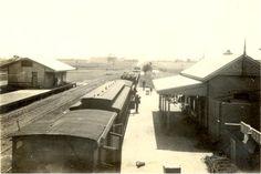 1922 Allendale Federation Uni Hist Coll