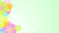 Floricultura 0023
