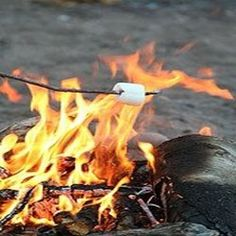 Roast some marshmallows over a fire