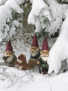 Gnome Boys Ranch escapees: Hanky, Panky and Skany started 'The Just Right Glove  Company' and made their fortunes on Gee - Bay.