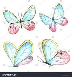 Collection of watercolor images of beautiful butterflies. A set of illustrations of an insect. Butterfly Clip Art, Butterfly Images, Butterfly Drawing, Butterfly Painting, Butterfly Watercolor, Watercolor Images, Watercolor Animals, Watercolor Paintings, Illustration Artists