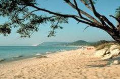 michigan beach - Google Search