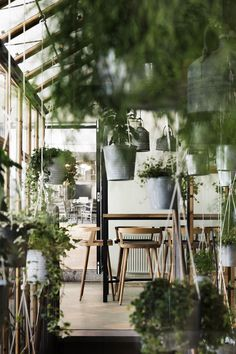The latest eatery by the restaurateurs at Cofoco, Väkst is home to some of Copenhagen's freshest Danish cuisine. With an airy and open interior, the restaurant is centered around an indoor greenhouse, and additional potted plants line the walls. Deco Restaurant, Restaurant Design, Greenhouse Restaurant, Cafe Design, Küchen Design, Slow Design, Urban Design, Plantas Indoor, Indoor Greenhouse