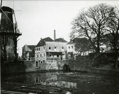 Kop van de Nieuwe Haven met molen de Drie Koornbloemen