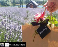 It's not often I see an image of my own packaging out of the Daisy Kitchen however the beautiful @sault_daylesford have just captured it so perfectly. From my logo which has such a special story to my Delbard roses I grow myself. Just beautiful. Thank you you talented ones. With Daisy Love.  #daisydining #daylesford #catering #daylesfordcatering  Repost from @sault_daylesford using @RepostRegramApp - Such a beautiful town we live in when talented and kind friends @daisydining drop you gifts…