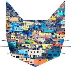 cerros felinas. #felino #cerro #sancristobal #lima #ciudades #cerrosquehablan #gatogatuno #colores