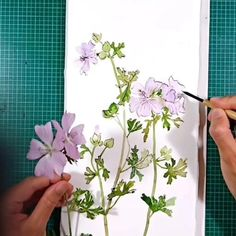 adding those ink lines is great fun! Watercolor And Ink, Watercolor Flowers, Watercolor Paintings, Nature Illustrations, Painting Videos, Paint Colors, Colour, Pretty, Watercolor