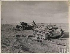 Image result for afrika korps surrender