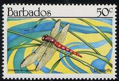 Dragonfly – Stamp Number BB 784