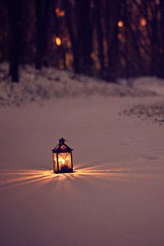 Amy Andres - lantern in the snow